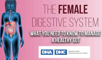 The female digestive system and what you need to know to manage a healthy gut